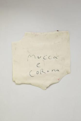 20_05_mucca_e_corona018
