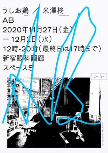 20_11_ab001