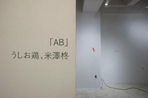20_11_ab003