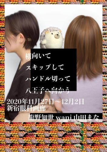 20_11_yokomuite001