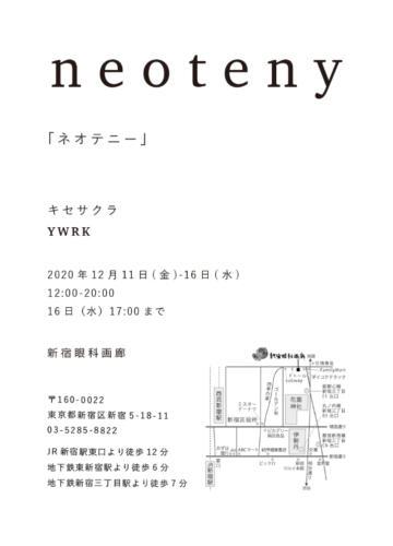 20_12_neoteny002