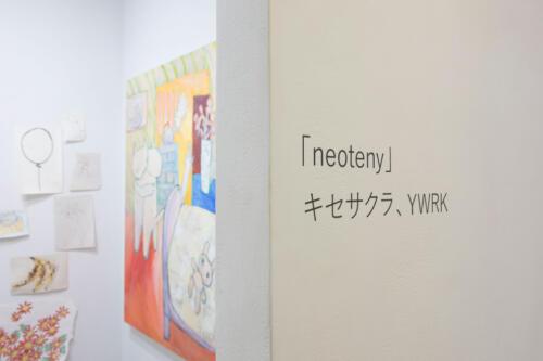 20_12_neoteny004