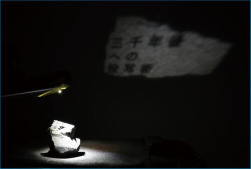 21_03_hirasemiki001