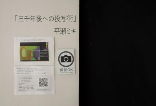 21_03_hirasemiki004