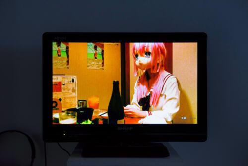 21_04_shirakawamari014